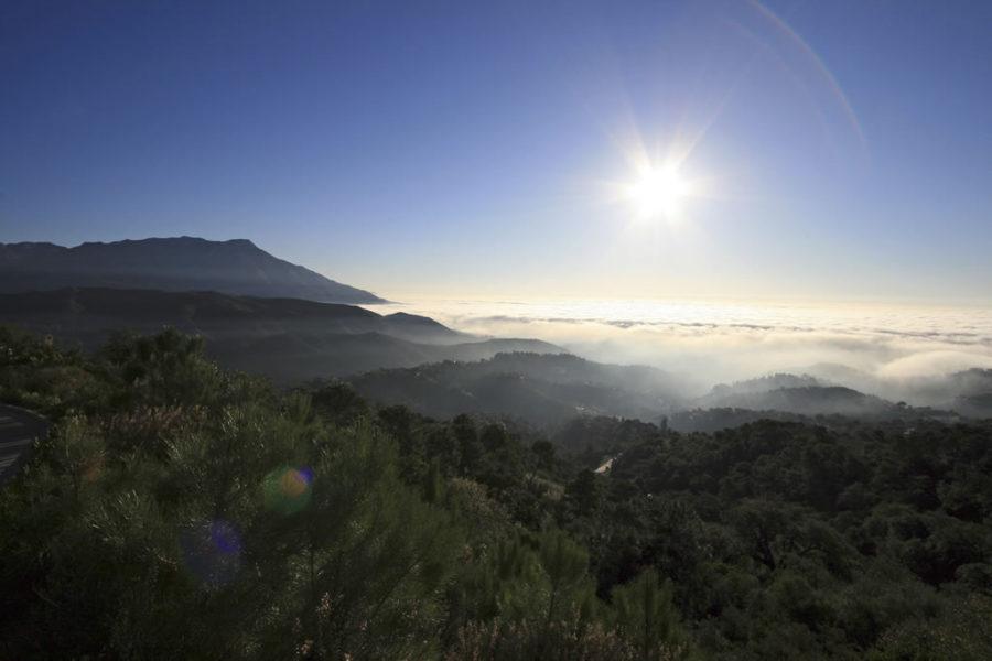La Zagaleta view